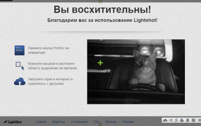 Lightshot 5.4.0.35 для Windows 10